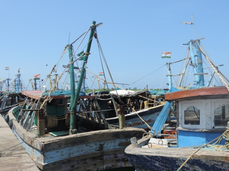 Anchored trawlers at Mudasalodai fish landing centre