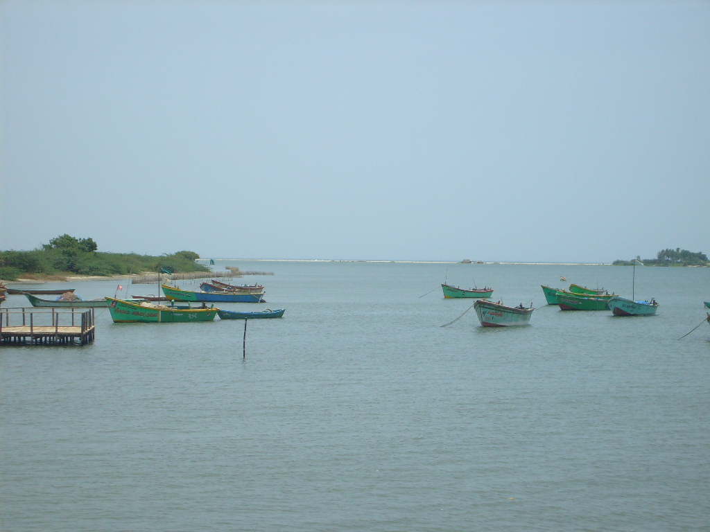 A view of Vellar estuary, Tamil Nadu